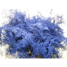 Buy Asperagus extra feathers blue 65 cm wholesale dyed