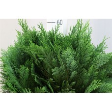 Conifer bag blue 50cm PER BUNDLE