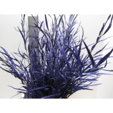 Buy Grevillea purple 80 cm wholesale dyed