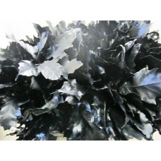 Oak leaves rubra black 20 cm