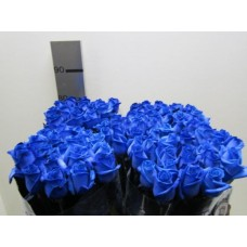 Buy Rosa bg vendela blue 80 cm wholesale dyed