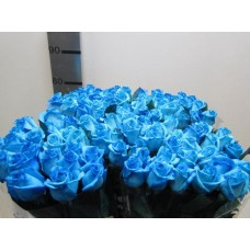 Buy Rosa bg vendela light blue 80 cm wholesale dyed