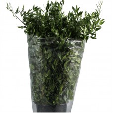 Ruscus large 90cm x bunches