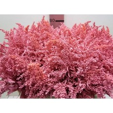 Buy Solidago pink 80 cm wholesale dyed