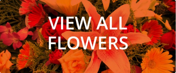 Shop for wholesale flowers