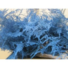 Asperagus 1e feathers ice blue 45 cm