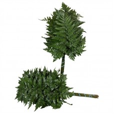 Leather fern large v p 55 cm